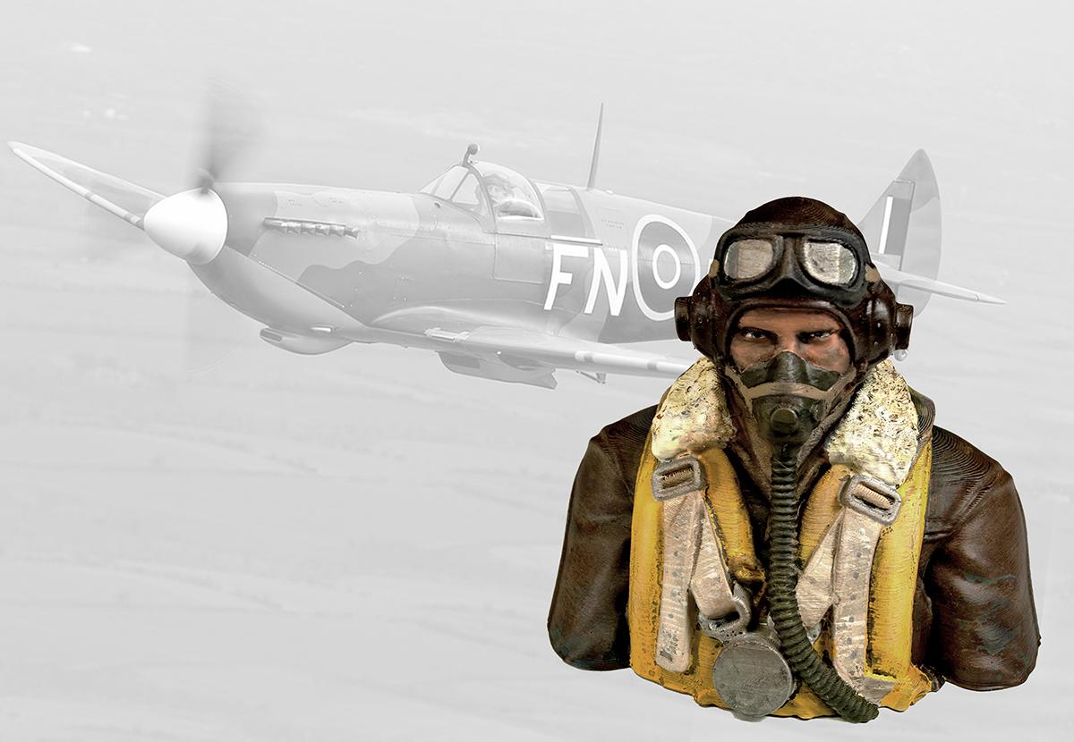 test_spitfire_pilot_and_spit.jpg